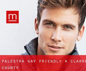 Palestra Gay Friendly a Clarke County