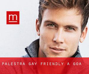 Palestra Gay Friendly a Goa