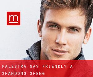 Palestra Gay Friendly a Shandong Sheng