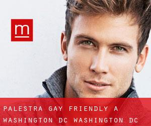 Palestra Gay Friendly a Washington, D.C. (Washington, D.C.)