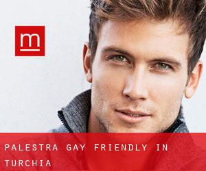 Palestra Gay Friendly in Turchia