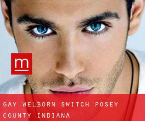 gay Welborn Switch (Posey County, Indiana)