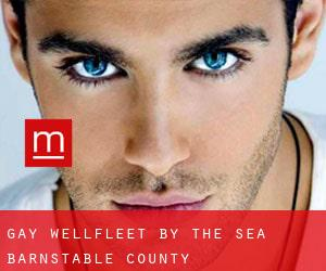 gay Wellfleet by the Sea (Barnstable County, Massachusetts)